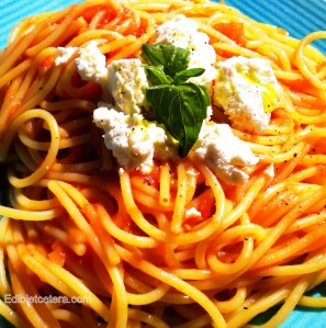 Blog, roasted tom sauce with pasta