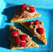 Wild Mushroom & Walnut Pate with Glazed Cranberries