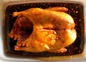 BLOG, marinaded Duck