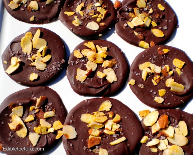 BLOG choc discs with seasalt and almonds 001