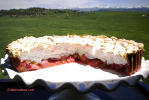 Rhubarb strawberry meringue 009