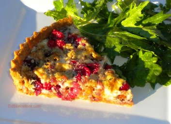 Cranberry, Walnut & Caramelized Onion Tart with Stilton.