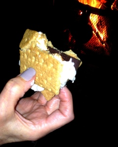 Campfire 'S'Mores' with organic dark chocolate