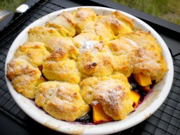 Lemon-Scented Peach & Blueberry Cobbler