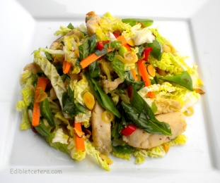 Warm Asian Chicken Salad with a Citrus Lemongrass Dressing