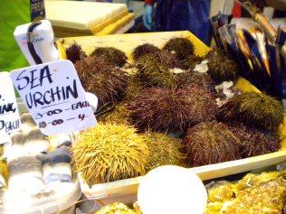 A spiky sea treat