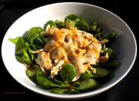 Chicken Salad with a Walnut Sauce